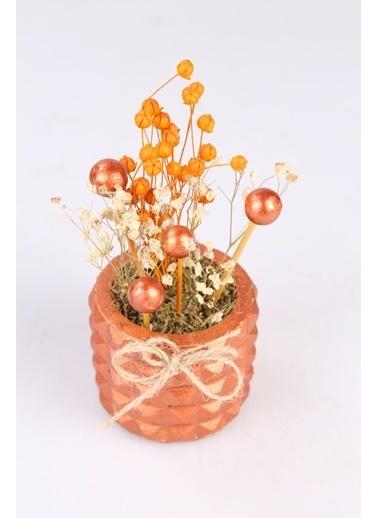 Kibrithane Çiçek Yapay Çiçek  Beton Saksı Kuru Çiçek Aranjman Kc00200760 Renkli